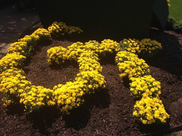 Flower design at the Sibley Horticultural Center